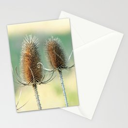 Look out - prickly plant ! Stationery Cards