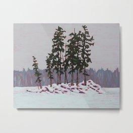 Frozen Island, Algonquin Park Metal Print