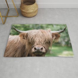 Scottish Highland Cattle with Forest in Background – Animal Photography Rug