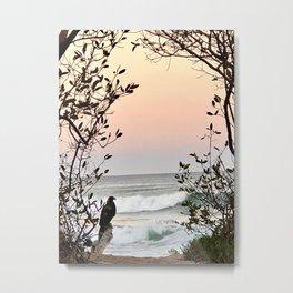 Falcon Sunrise  Metal Print