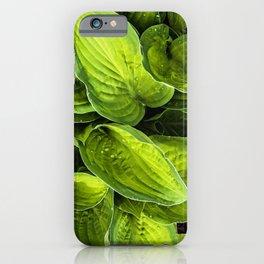 green flow iPhone Case