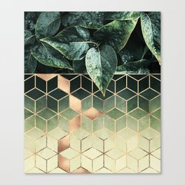 Leaves And Cubes 2 Canvas Print
