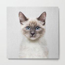 Cat - Colorful Metal Print