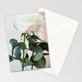Fresh white roses, front view on the light background Stationery Cards