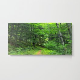 Forest 5 Metal Print