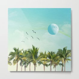 003 - A new Moon Metal Print