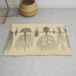 Botanical Roots Rug