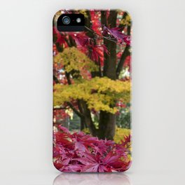 Acer Colours iPhone Case