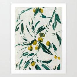 Olive Branch Art Print
