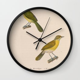 Rio de Janeiro or Lemon chested Greenlet Rufous crowned Greenlet5 Wall Clock
