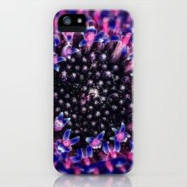 Gerbera Daisy Macro iPhone Case