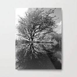 Treeflection. Tree and Pond. Exmoor. Metal Print