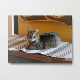 HOME DECOR  Metal Print