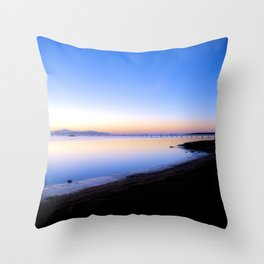 The Madness of the Photographer Throw Pillow