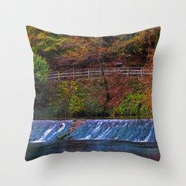 Autumn colors arround the Blautopf Throw Pillow