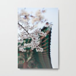 Blossoms Near the Bell, Seoul Korea Metal Print