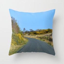 Road to Ladies Brae Throw Pillow
