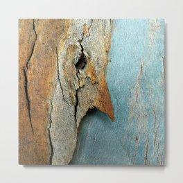 Eucalyptus tree bark texture 10 Metal Print