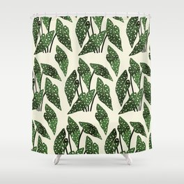 begonia maculata interior plant Shower Curtain