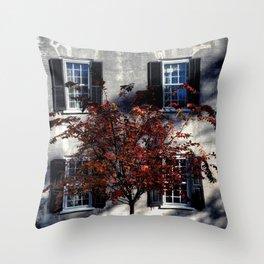 Single House Throw Pillow