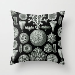 Ernst Haeckel - Hexacorallia Throw Pillow