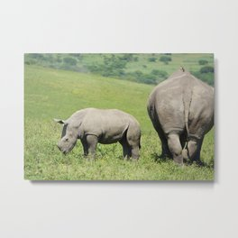 Rhino & Baby in South Africa Metal Print