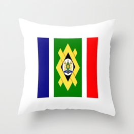 flag of Johannesburg Throw Pillow
