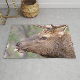 Watercolor Elk Bull 10, Estes Park, Colorado, The Jokester Rug