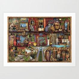 The Museum Shelf Art Print