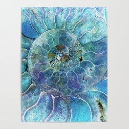 Aqua seashell - mother of pearl - Beautiful backdrop Poster