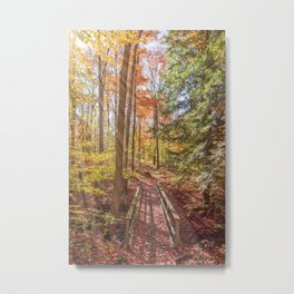 Forest Bridge Metal Print
