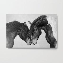 Horses - Black & White 4 Metal Print