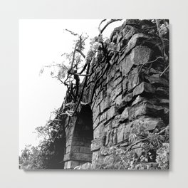 Haunted Wall of Wisteria Metal Print