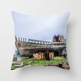 Remembering Better Days Throw Pillow