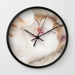 Sleeping baby orange and white tabby kitten Wall Clock