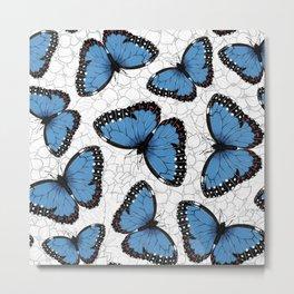 Blue morpho butterflies Metal Print