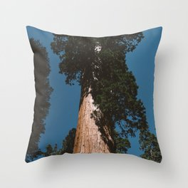 Sequoia National Park VII Throw Pillow
