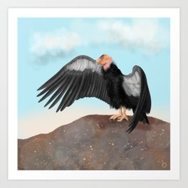 California Condor Magnificent Bird Art Print