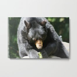 Just chillin and eatin Metal Print