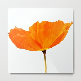 One And Only - Orange Poppy White Background #decor #society6 #buyart Metal Print