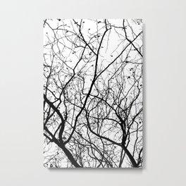 Branches Metal Print