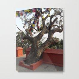 Tree at the Monkey Temple - Kathmandu, Nepal Metal Print