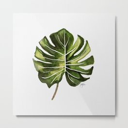 Monstera Broad Leaf - Single Metal Print