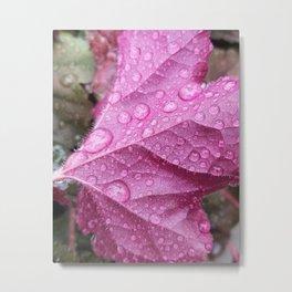 On a cold rainy day Metal Print