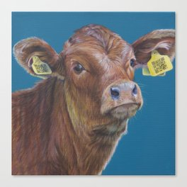 Smart Calf Canvas Print