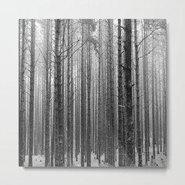 Svetlitsa #1 Metal Print