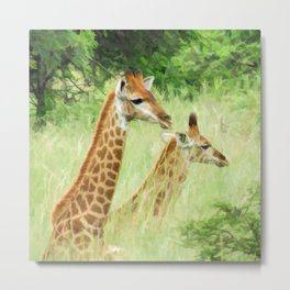 Baby giraffes in natures nursery Metal Print