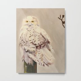 Snowy Owl Print Metal Print