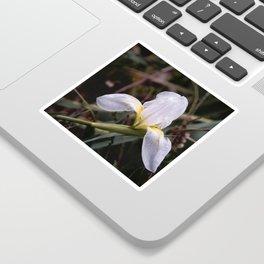 Floral 40 #flower #moody Sticker