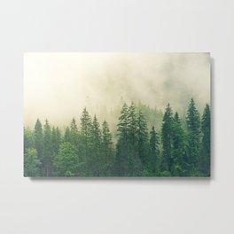 Forest Fog Nature Metal Print